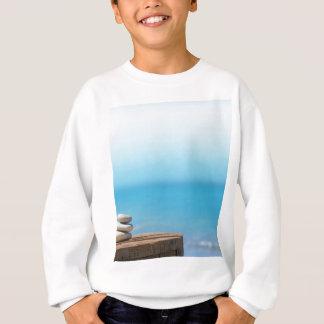 Miscellaneous - Pebbles & Fourteen Toilets Sweatshirt