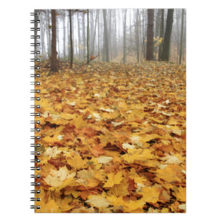 Miscellaneous - Red Autumn Patterns Fourteen Notebook