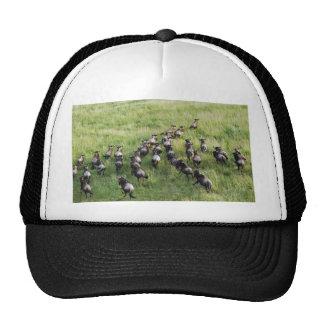 Miscellaneous - Running Blue Wildebeest Pattern Trucker Hat