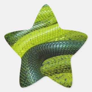 Miscellaneous - Three Wraps Pattern Cobras Star Sticker