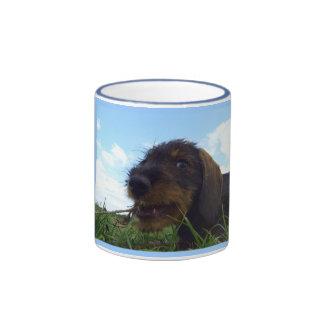 Mischevieous Dachshund Puppy Ringer Coffee Mug