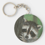 Mischief Raccoon up a Tree keychain