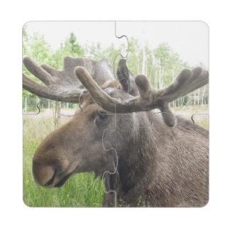 Mischievious Moose Puzzle Coaster