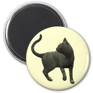 Mischievous Black Cat Magnet