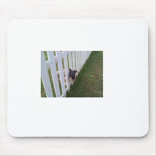 Mischievous Dog Mouse Pad