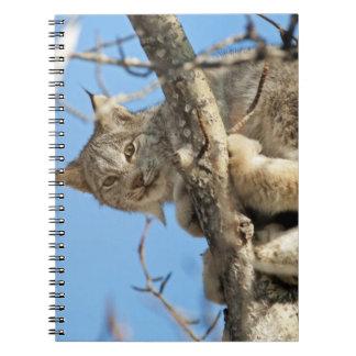 Mischievous Lynx Spiral Note Book