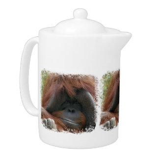 Mischievous Orangutan Ape Photo