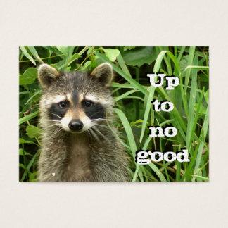 Mischievous Raccoon Business Card