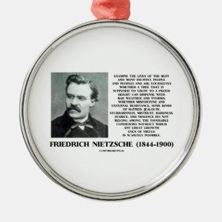 Misfortune Favorable Conditions Growth Nietzsche Metal Ornament