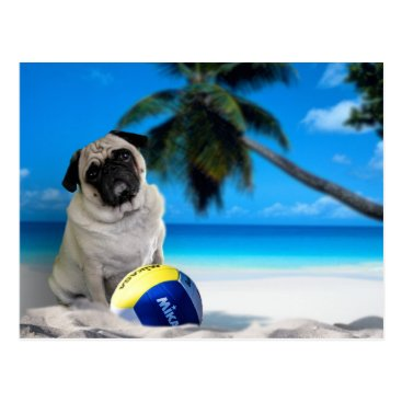 Beach Themed Misha Pug at the Beach Postcard