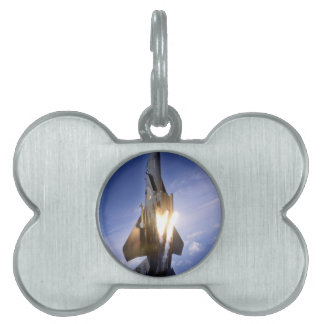misil de lanzamiento del jet f-15 placas de mascota