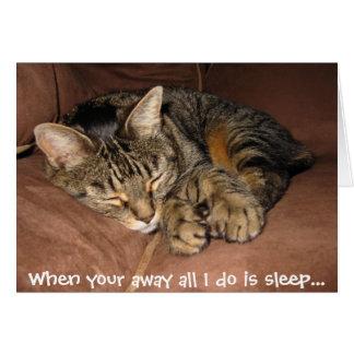 Miso Sleep Card