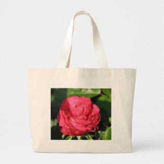 Miss All-American Beauty Hybrid Tea Rose 097 Canvas Bag