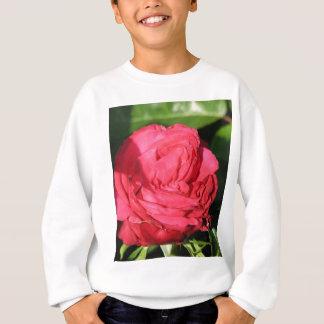 Miss All-American Beauty Hybrid Tea Rose 097 Sweatshirt