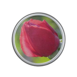 Miss All American Beauty Rose Bluetooth Speaker