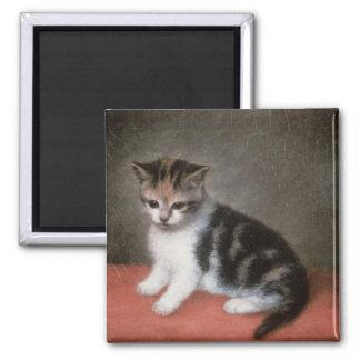 Miss Ann White's Kitten, 1790 2 Inch Square Magnet