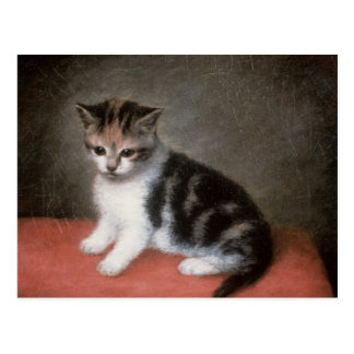 Miss Ann White's Kitten, 1790 Postcard