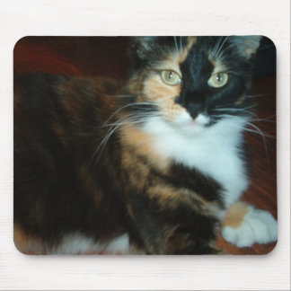 Miss Calico Kitty quality mouse pad