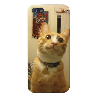 Miss Chrissy s CGK iPhone5 case iPhone 5 Cover
