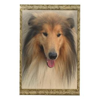 Miss Elegant Lady Collie Dog  Wood Wall Art