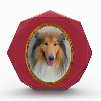 Miss  Elegant Lady Collie DogMulti products select Award