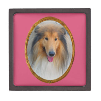 Miss  Elegant Lady Collie DogMulti products select Gift Box