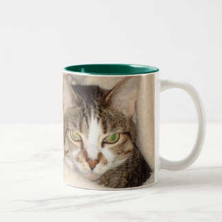 Miss.Kitty.2010 Two-Tone Coffee Mug