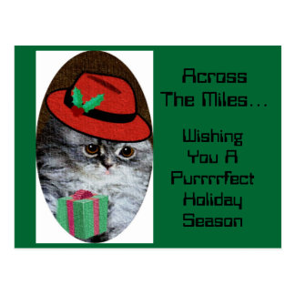 Miss Kitty Postcard