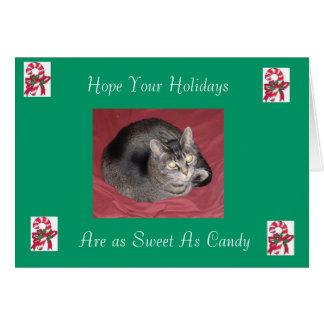 Miss Millie Christmas Card