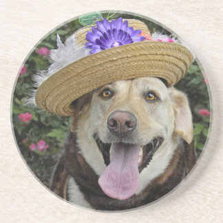 Miss Pickles Coaster