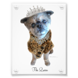 Miss Winkie The Queen Large Satin Photo Card