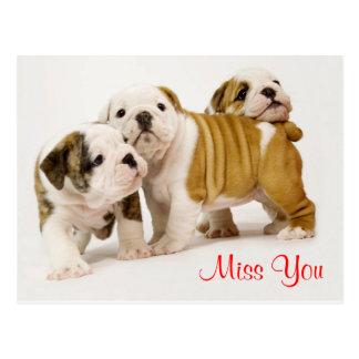 Miss You Bulldog Puppy Dogs Greeting Postcard