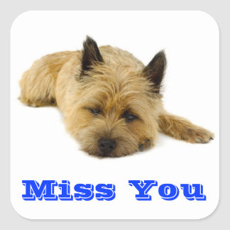 Miss You Cairn Terrier Puppy Dog Greeting Stickers