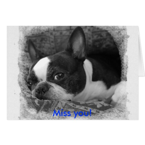 Miss you! cards