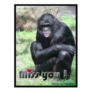 Miss you chimpanzee postcard
