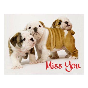 alwaysdogs Miss You English Bulldog Puppy Dog Postcard