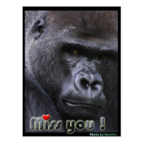 Miss you Gorilla Postcard