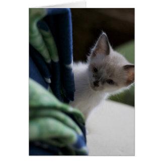 Miss You Peek-a-Boo Kitten Card