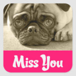 Miss You Pug Puppy Dog Greeting Stickers