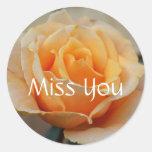 Miss you, rose in Peach Classic Round Sticker