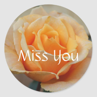 Miss you, rose in Peach Stickers