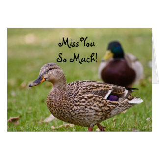 Miss You So Much Duck Card