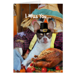Miss You Thanksgiving Chihuahua dog Card