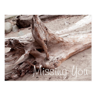 Miss You Trunk in English Bay Beach Vancouver Postcard