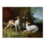 Misse and Turlu, two greyhounds of Louis XV Postcard