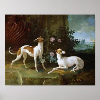 Misse y Turlu, dos galgos de Louis XV Impresiones