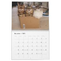 Missenell  2021 calendar