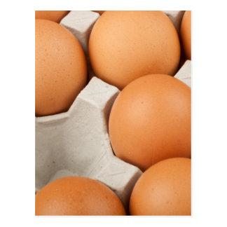Missing chicken egg postcard