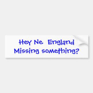 Missing Something? Bumper Sticker