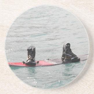 Missing Wakeboarder Coaster